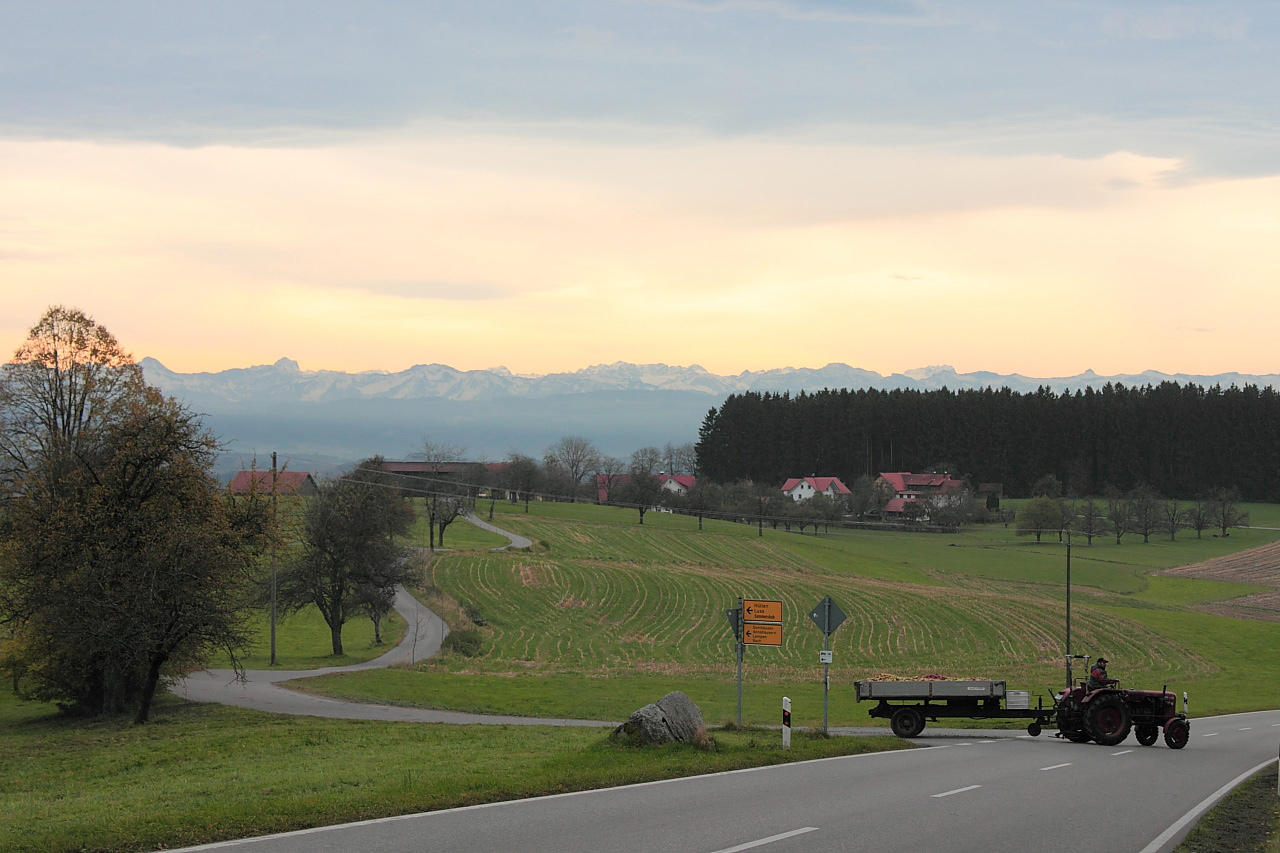 Meanwhile, back at the farm - bringing home the apple harvest near Tettnang, Allgäu